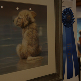 Competitive Exhibits