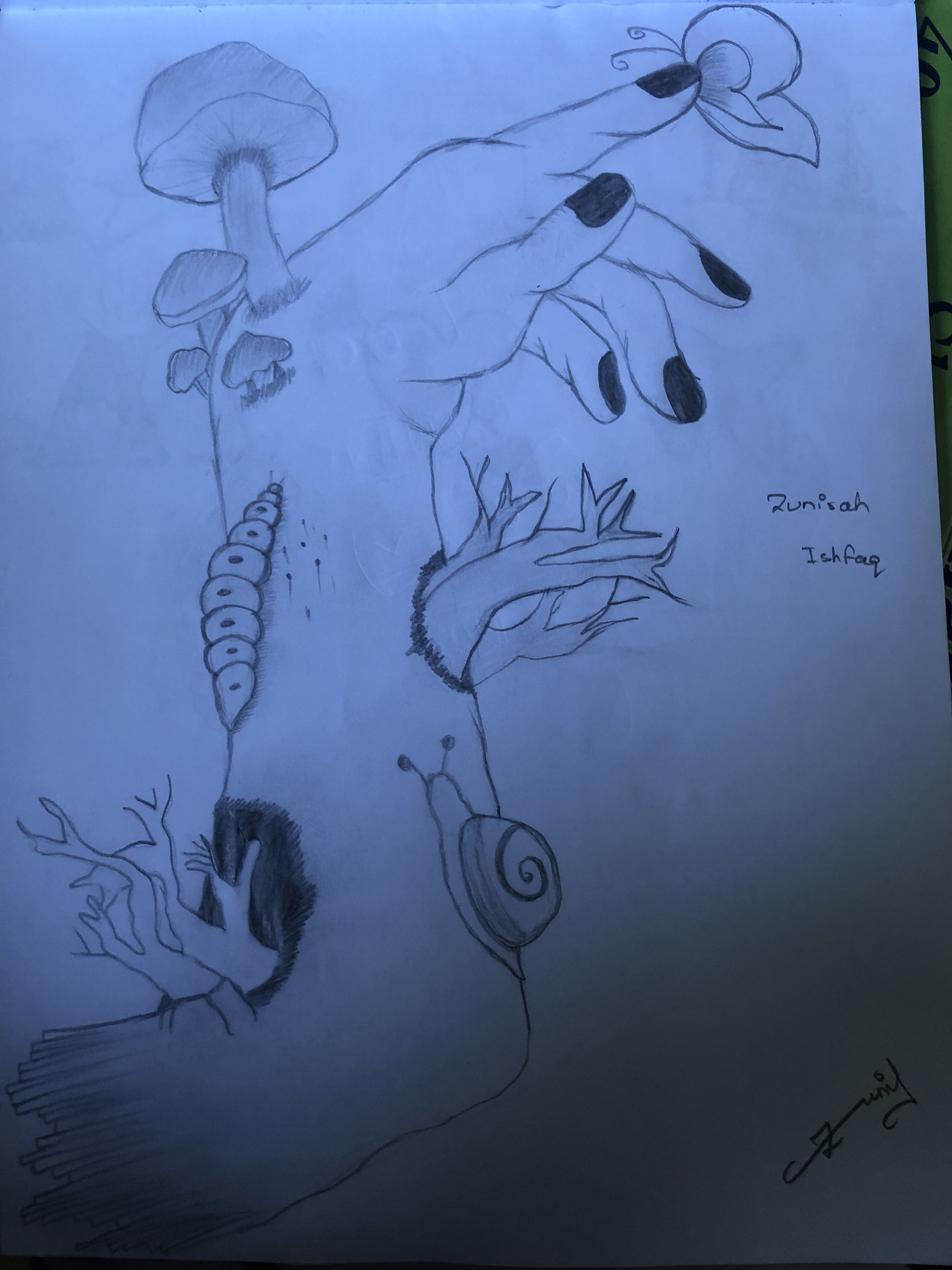 1st. Zunirah Ishfaq, Drawing #3
