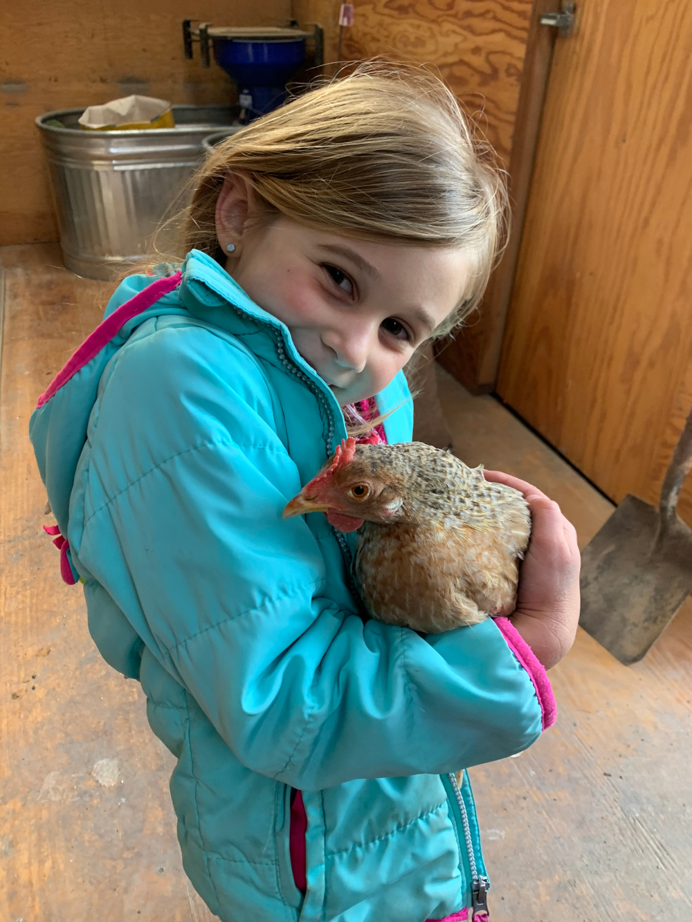 2nd. Trudy Bruhn_helping take care of baby chicks and hens 2