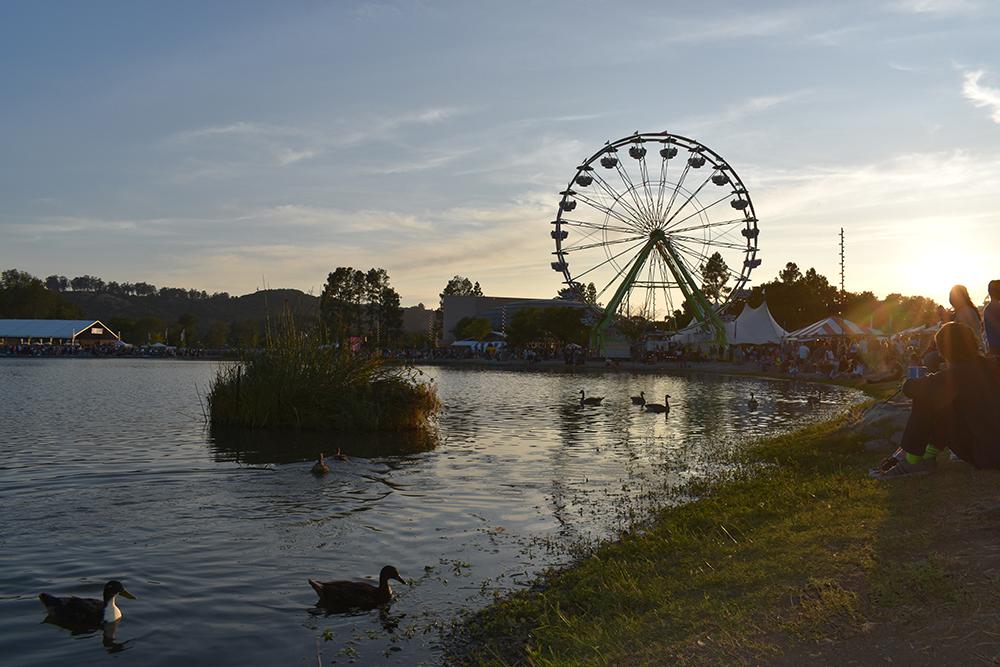 1st. Paloma Rincon, Ducks and the Ferris Wheel