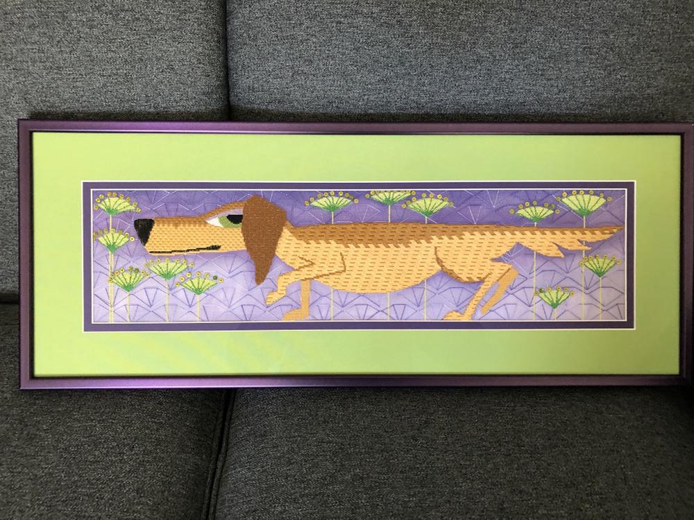 1st. Christine Day, Long Dog