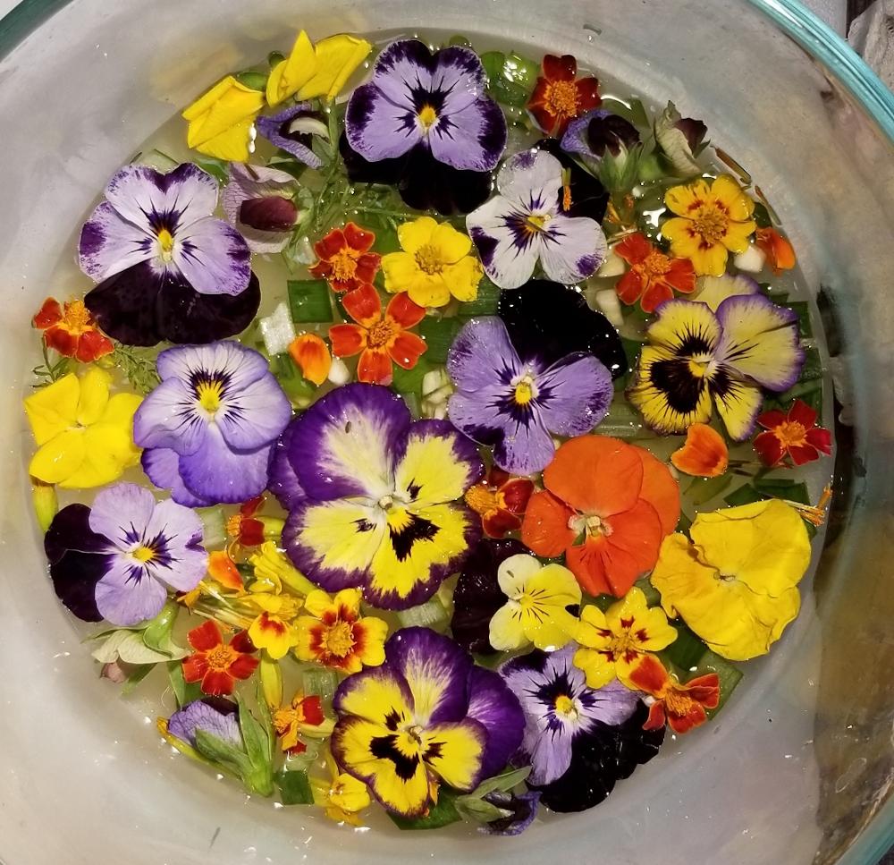 1st. Barbara Winkler, Flowers to Ferment