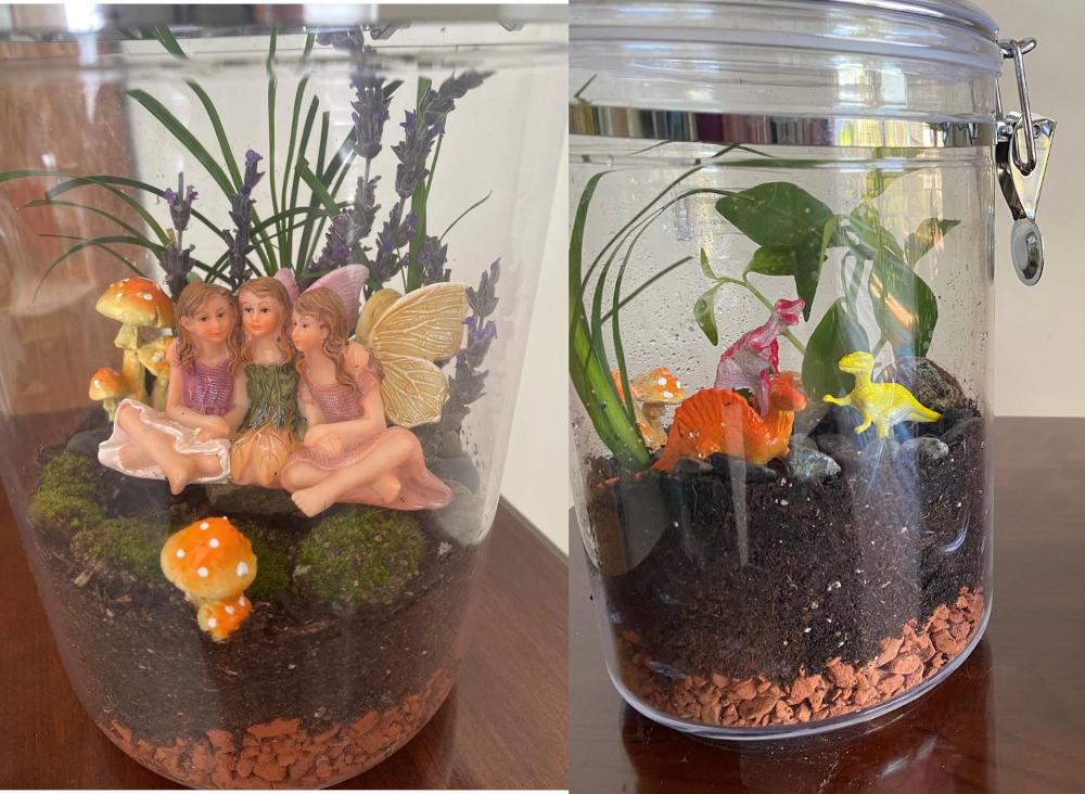 4th. Susan Weber, Fun Terrariums for Preschool Classroom