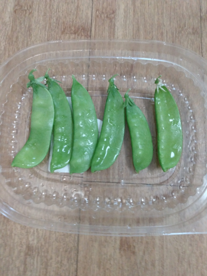 2nd. Zerene Soans, Peas