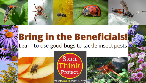 Bring in the Beneficials