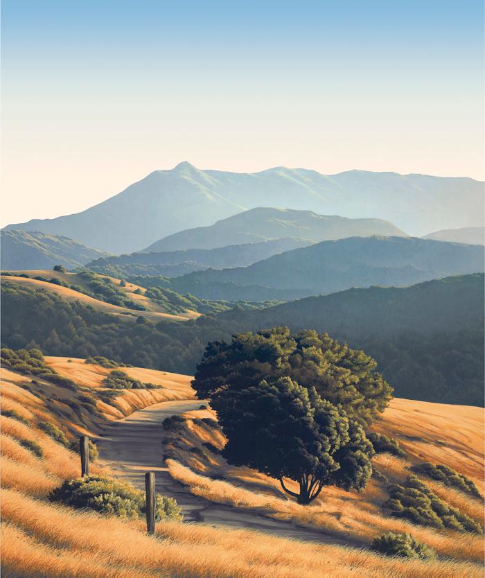Mt. Tam from Sleepy Hollow